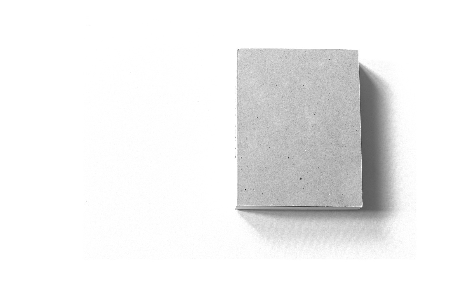 Das leere Buchcover des Murifeldbuches (Sonderausgabe)